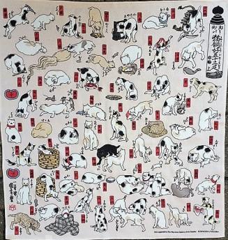 53-Katzen
