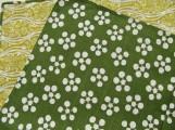Pflaumen Rikyu grün/gelb